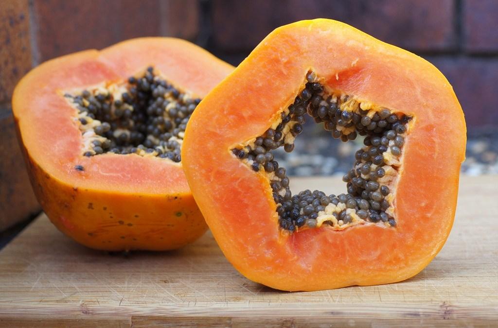 Un po' di carica anche per loro? Scopriamo insieme le proprietà della Carica papaya, utile anche per i nostri amici a 4 zampe…