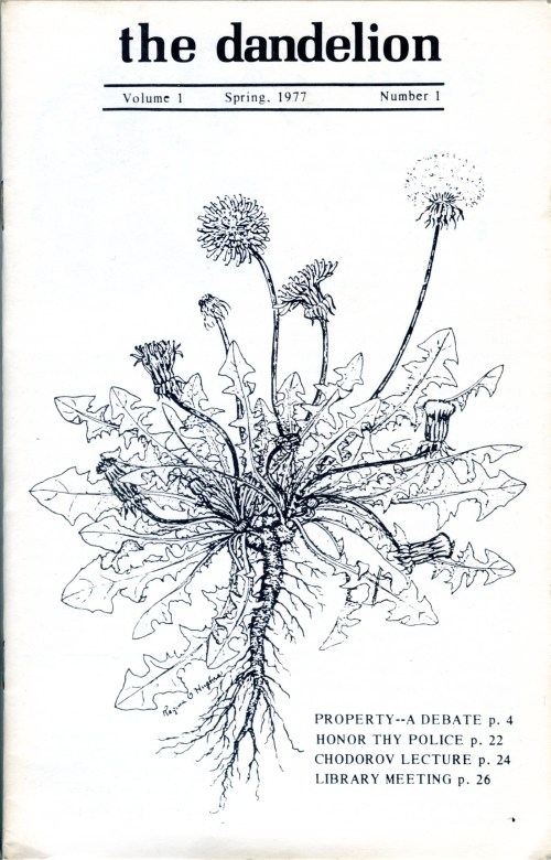 dandelion-no01