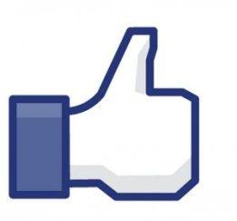 faceboook like