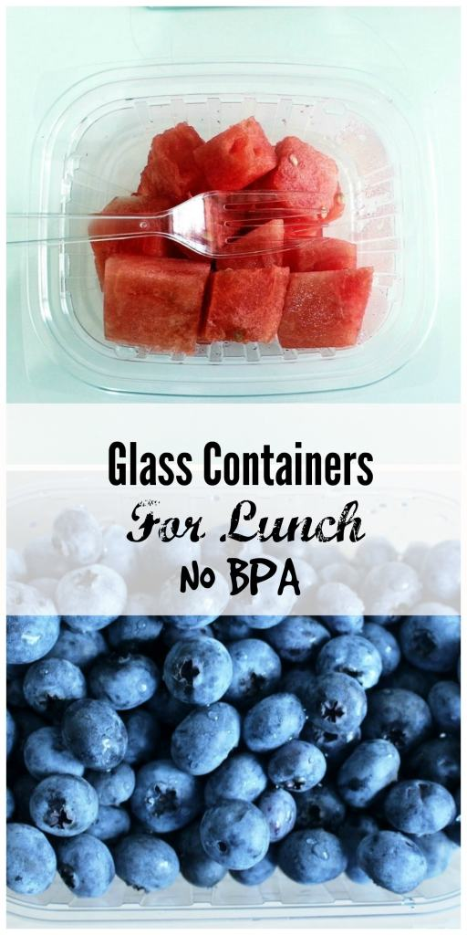 glass containers for lunch