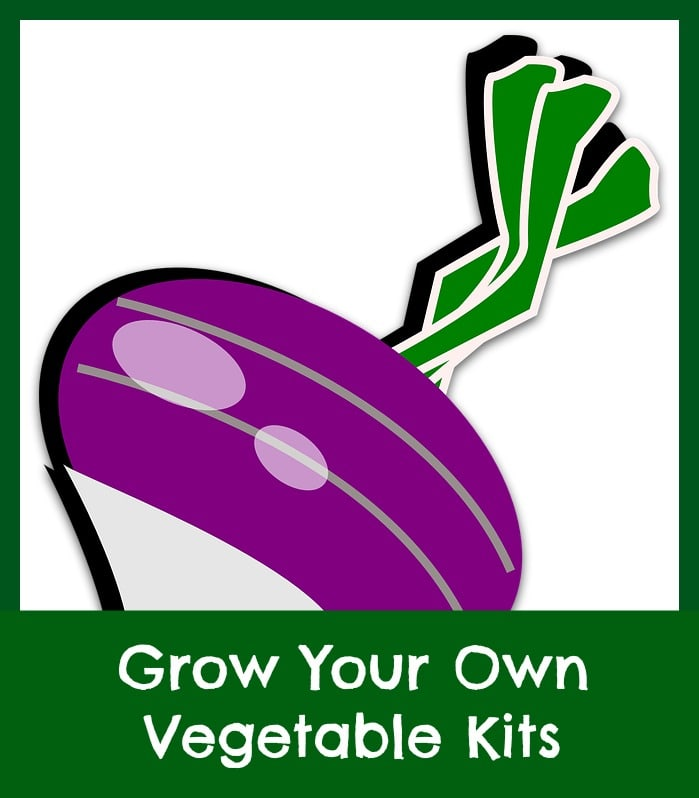grow your own vegetable garden kits