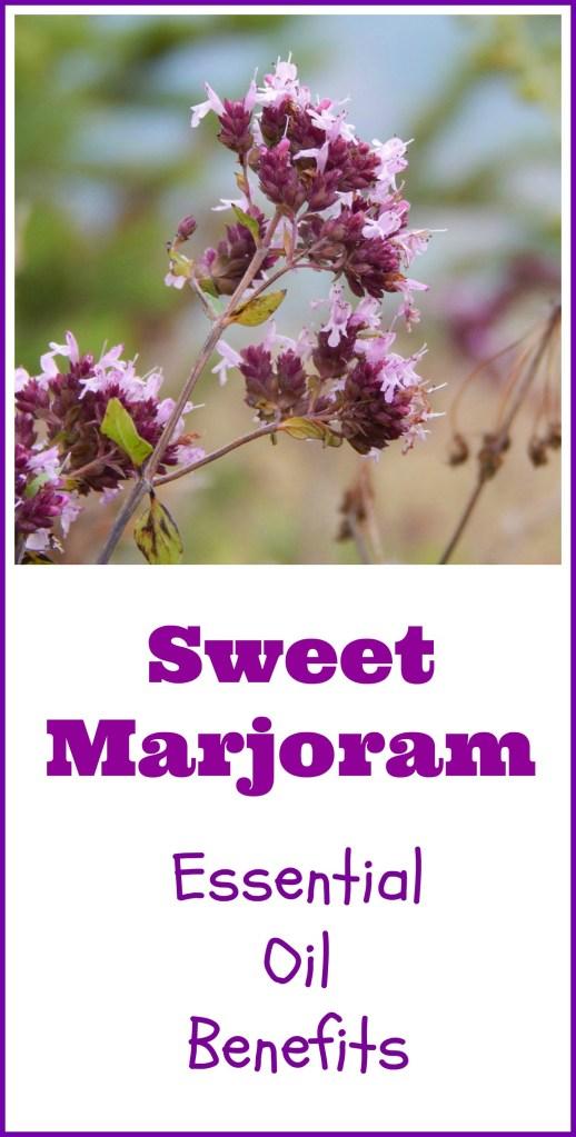 sweet marjoram essential oil benefits