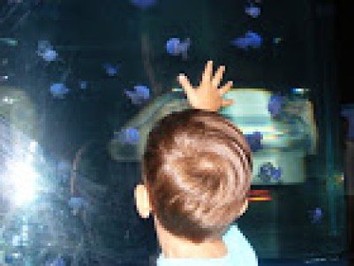 Șansa unei lumi mai bune, unui viitor frumos: copiii sursa arhiva personală