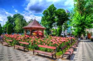 Parcu trandafirilor Sursa EduSoft.ro