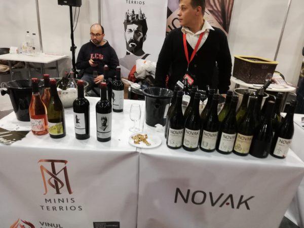 Am descoperit vinurile inegalabile din Moldova