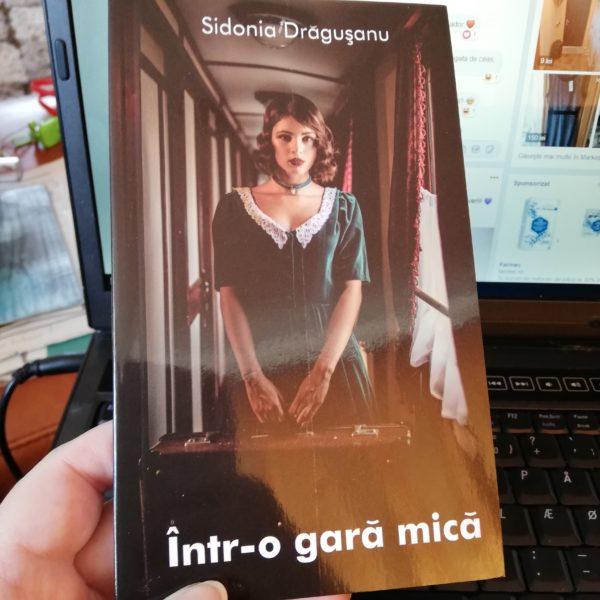 IMG 20190313 124503 Într-o gară mică - Sidonia Drăgușanu, doar opinii