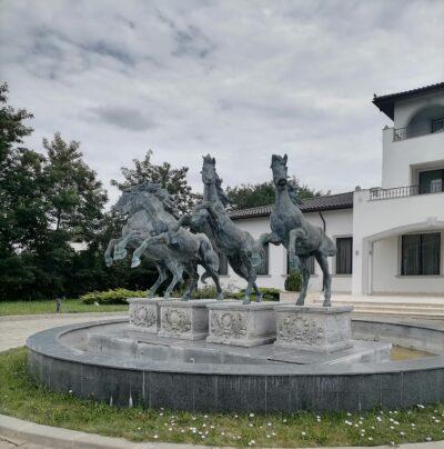 IMG 20200727 140859 Poveste despre locuri de poveste: Royal Horse