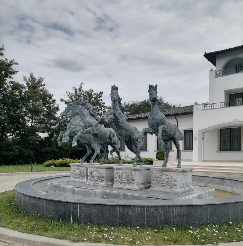IMG 20200727 140859 scaled Poveste despre locuri de poveste: Royal Horse