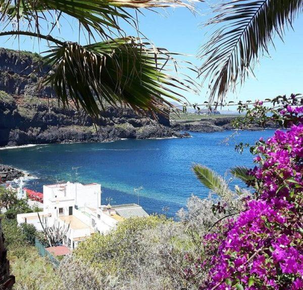 185305730 1605547846311716 8944636059335288584 n Știri grozave despre călătoriile în Tenerife