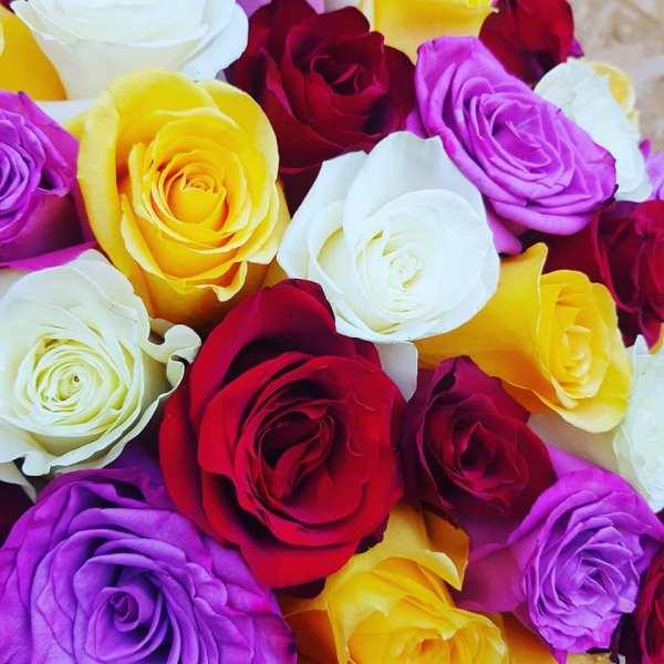 44269429 336510137107636 107111008278937600 n 7 motive să comandăm pe florărie online