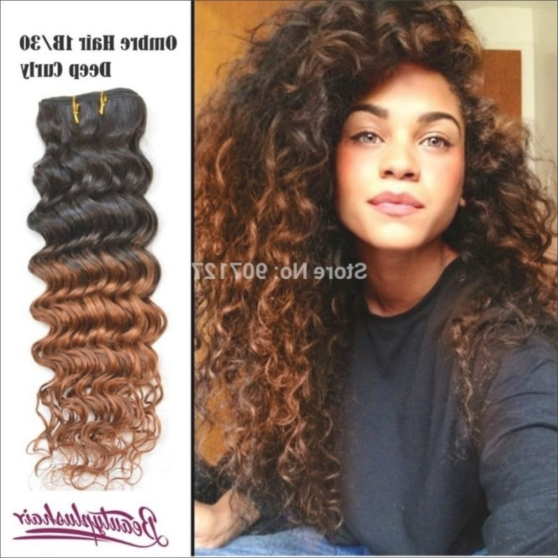 Long Curly Hair Color Ideas Makeupsite