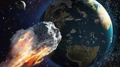 29 April: Asteroid Moving Towards the Earth, Know What NASA Said? (Ulka Pind)