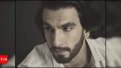 Ranveer Singh shares a broody picture on Instagram and it is making his fans go gaga | Hindi Movie News
