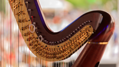 The Beauty of Harp Instrument