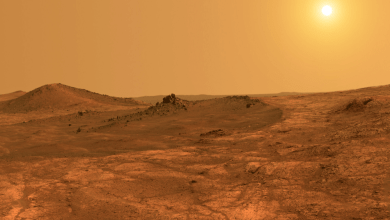 The possibility of life outside of Earth shocks, why is life on the closest planet 'Proxima B' difficult?