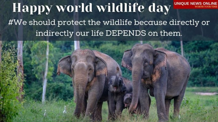 Happy World Wildlife Day 2021 Wishes, Messages, Greetings, Quotes, and images