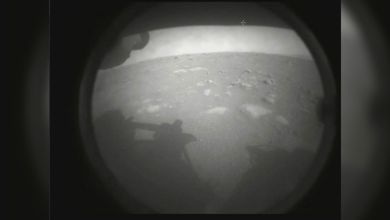 NASA's rover landed on Mars, why mission is historic
