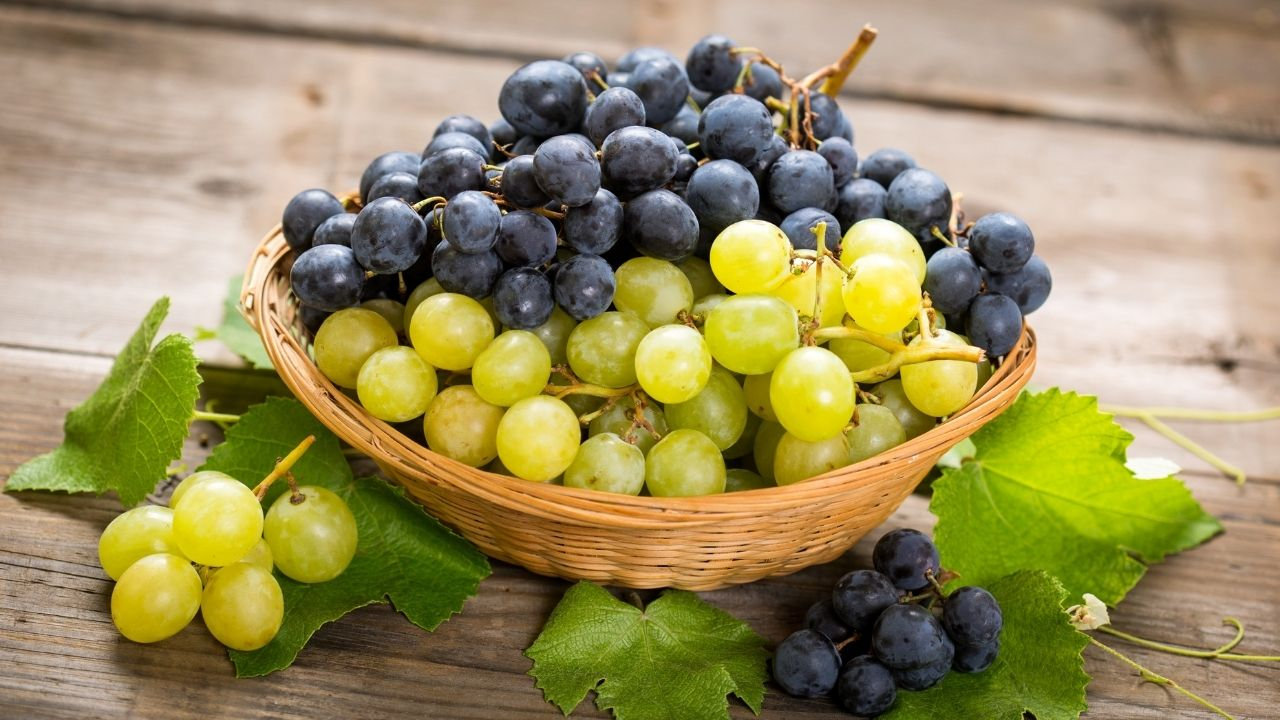 Grape is a treasure of nutrients, protects against 10 diseases from head to foot