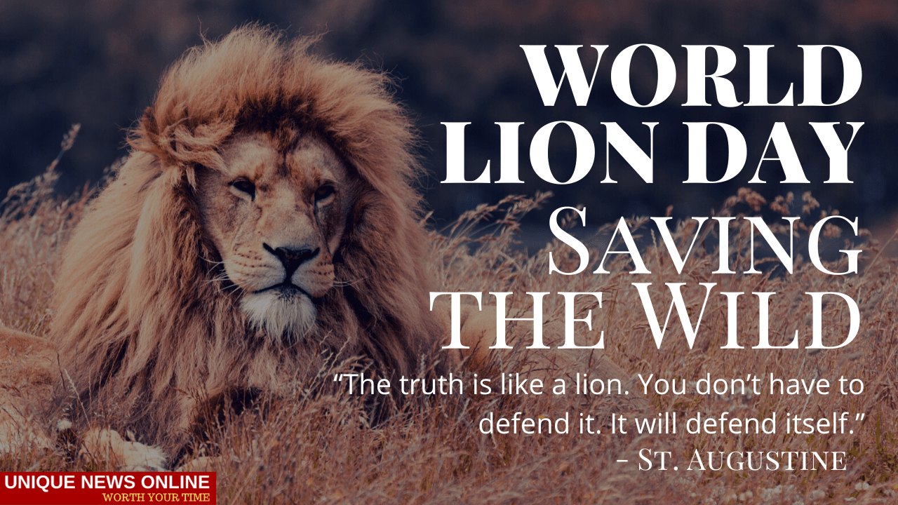 World Lion Day 2021 Theme, Quotes, Status, Images, Slogans, Poster, Wishes and Drawing to create awareness