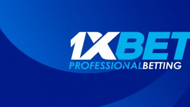 Affiliate program from 1xBet: earnings on bets