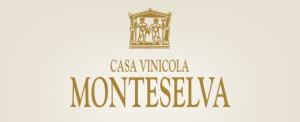Monteselva logo