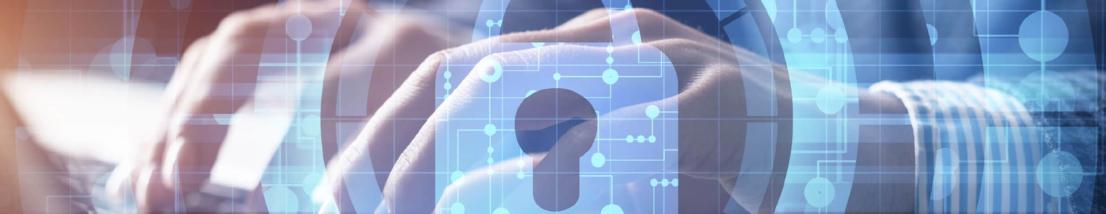 Seguridad Informatica_Mesa de trabajo 1