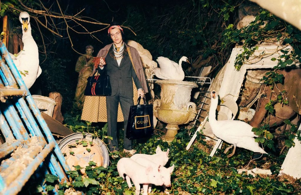 harry styles gucci pre fall 2019 4