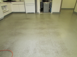 Before Stripping & Waxing VCT tile | natural stone cleaning