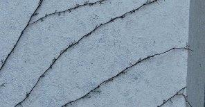 IMG_4163_exterior-wall_2500