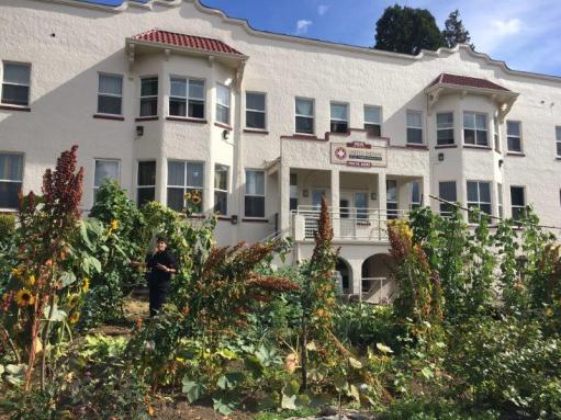 Labateyah home and garden (2)