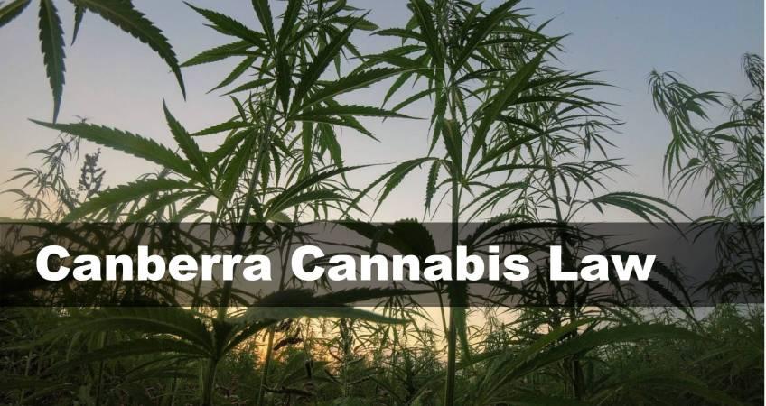Canberra Cannabis Law