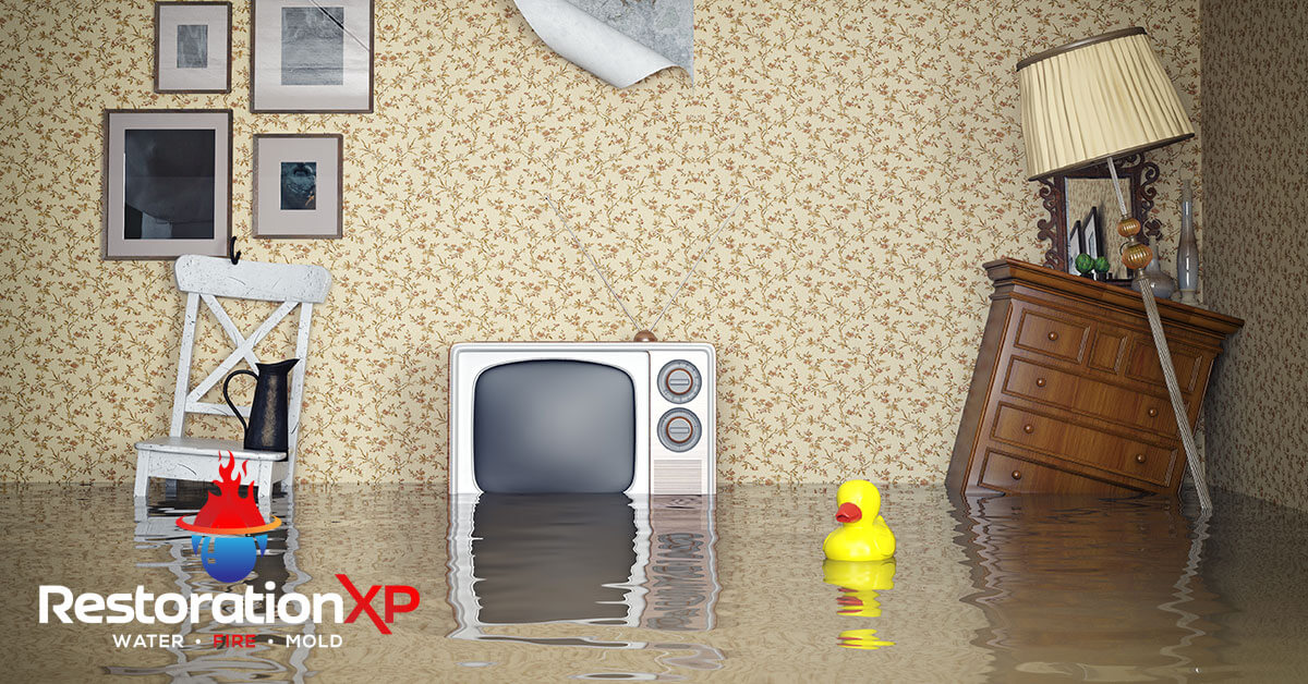 Emergency water damage cleanup in Anna, TX