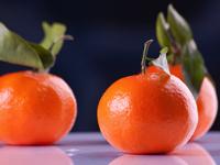 Jour 1-mandarine