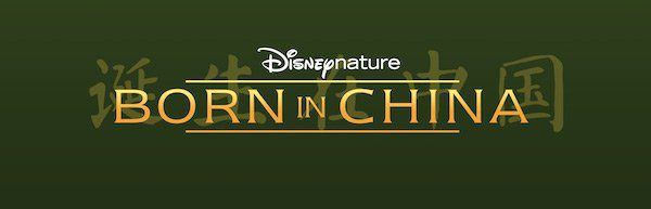 born of china logo