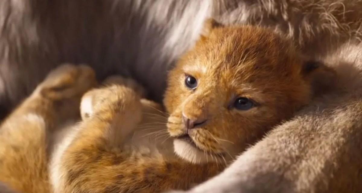 il re leone live-action recensione