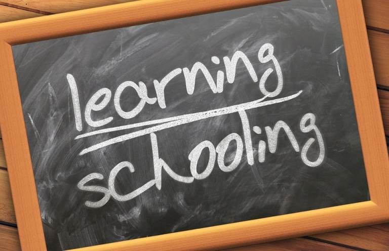 How Learning (Styles) Can Maximize Your Child's Grades