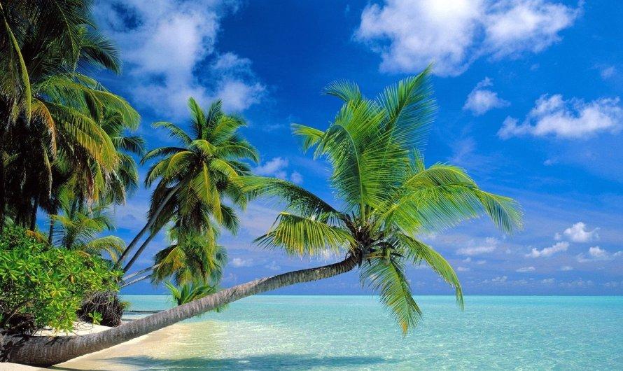 Explore natural beauty in Solomon Islands