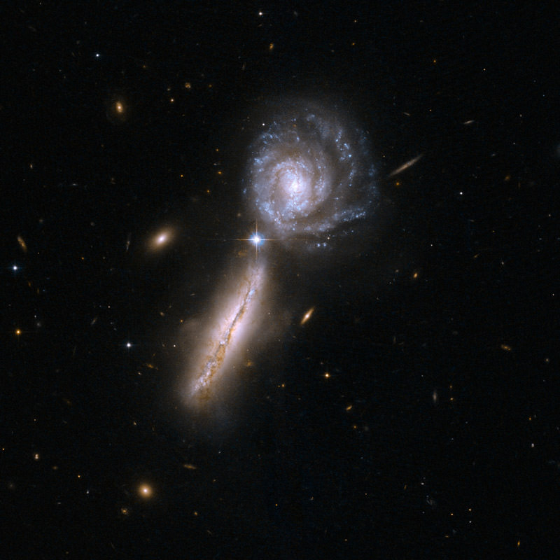 Newly Discovered Satellite Galaxies: Another Blow Against ...