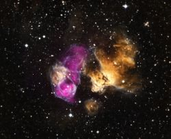 """A composite image with Chandra data (purple) showing a """"point-like source"""" beside the remains of a supernova, suggesting a companion star may have survived the explosion. Credit: X-ray: NASA/CXC/SAO/F.Seward et al; Optical: NOAO/CTIO/MCELS, DSS"""