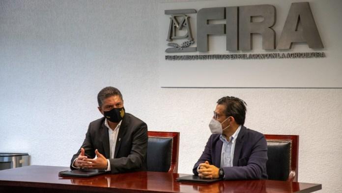 La experiencia de FIRA fue fundamental en la creación de la Licenciatura en Agronegocios en la UMSNH.