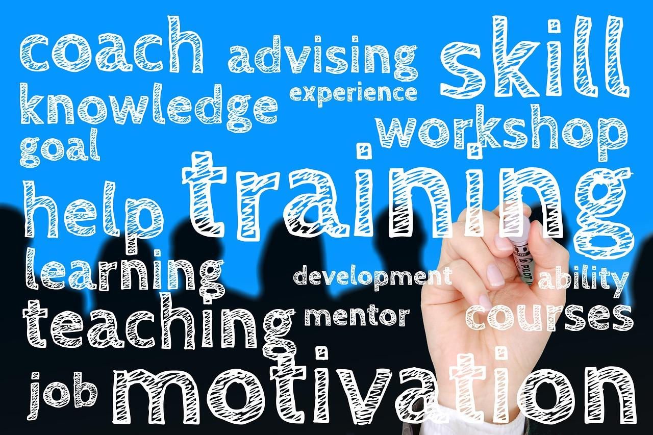Panorama des solutions de Talent Management ( TMS)