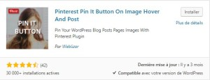 Pinterest Pin It Button