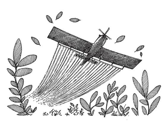 Ilustraciones: Tobías Arboleda