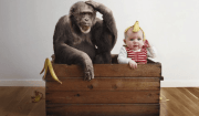 bambina scimmia