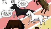 che verso fanno i cavalli