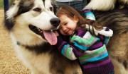 bimbo e cane husky