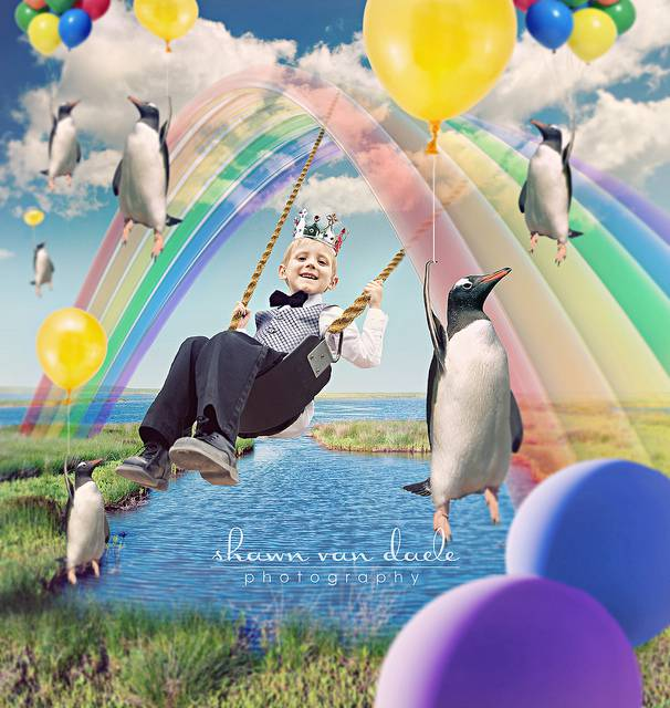 bimbo arcobaleno e pinguini