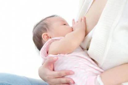 latte materno e batteri