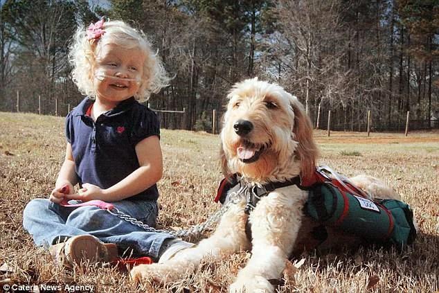 bimba malata e cane