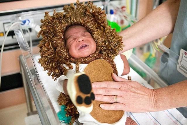 bimbo re leone